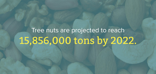 tree nut industry projection